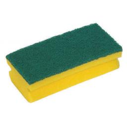 Sponge Scourer (Pack of 10)