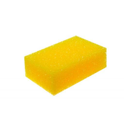 Upholstery Scrub Sponge